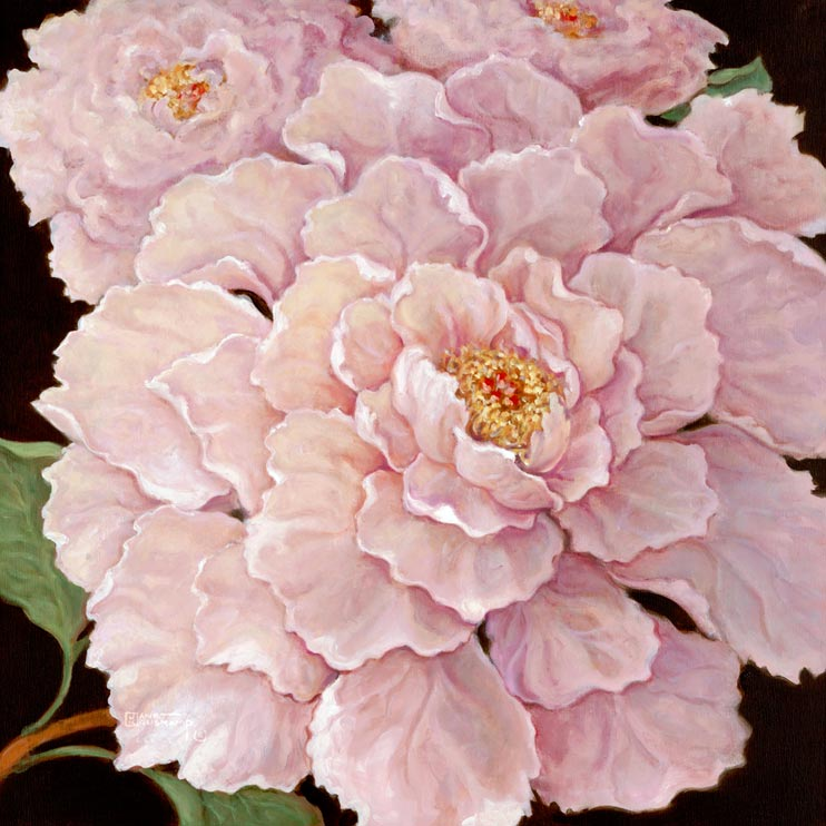 Janet Kruskamp's Paintings - Fuschia Peonies, an original oil painting of lovely pastel fuschia colored peonies. The flowers take up nearly the entire square painting with just a few leaves and a glimpse of stem in some corners. The petals start off as small, curled protectively around the center. As they unfold, the get larger and larger until they are four or five times the size of the ones in the center. One of the Still Lifes Gallery of Original Oil Paintings and  original paintings by Janet Kruskamp