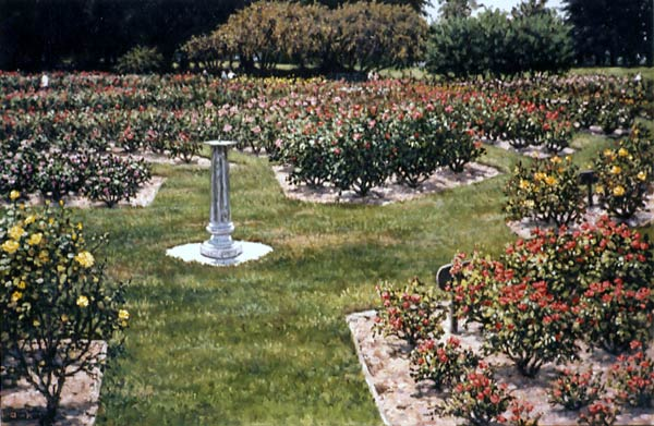 San Jose Municipal Rose Garden By Janet Kruskamp