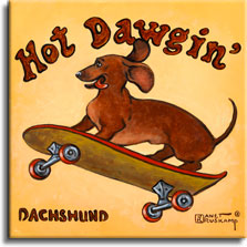 Hot Dawgin', a poster style painting of a dachshund by artist Janet Kruskamp. The dachshund is flying through the middle of the painting on a skateboard with red wheels. His tongue is out and his ears are flapping backwards . The words Hot Dawgin' are curved large over the top of the yellowish painting, and DACHSHUND is printed in the lower left. Lovers of the breed will love this new addition to Janet Kruskamp's original paintings, only available directly from the artist.